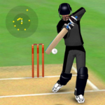 Smashing Cricket – a cricket game like none other 2.9.9 APK MOD Unlimited Money Download