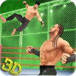 Tag Team Wrestling Superstars Fight Hell In Cell MOD Unlimited Money Download