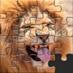 Puzzles for Adults no internet MOD Unlimited Money Download